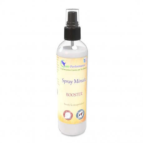Spray minute booster 250 ml